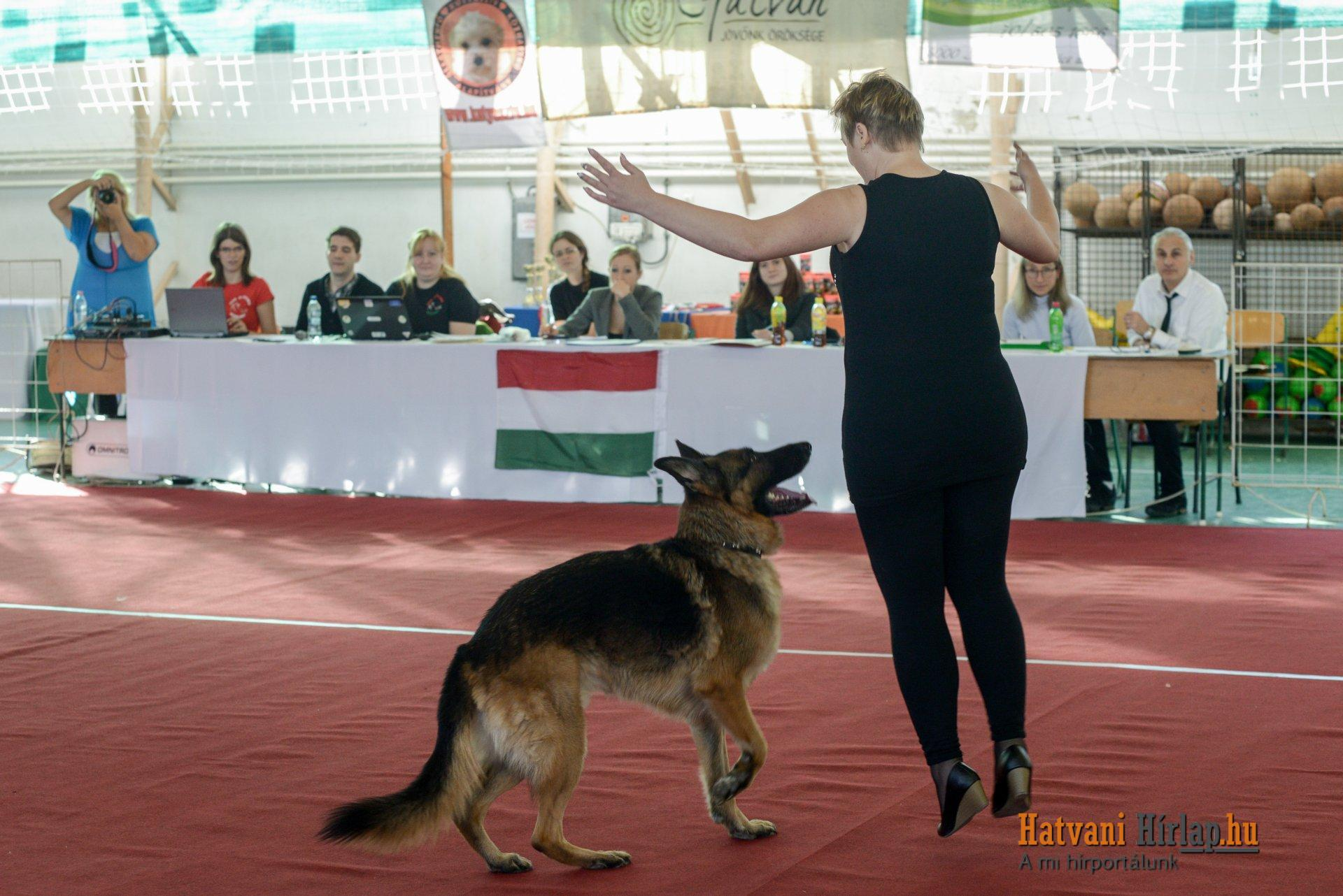 dog_dancing_01
