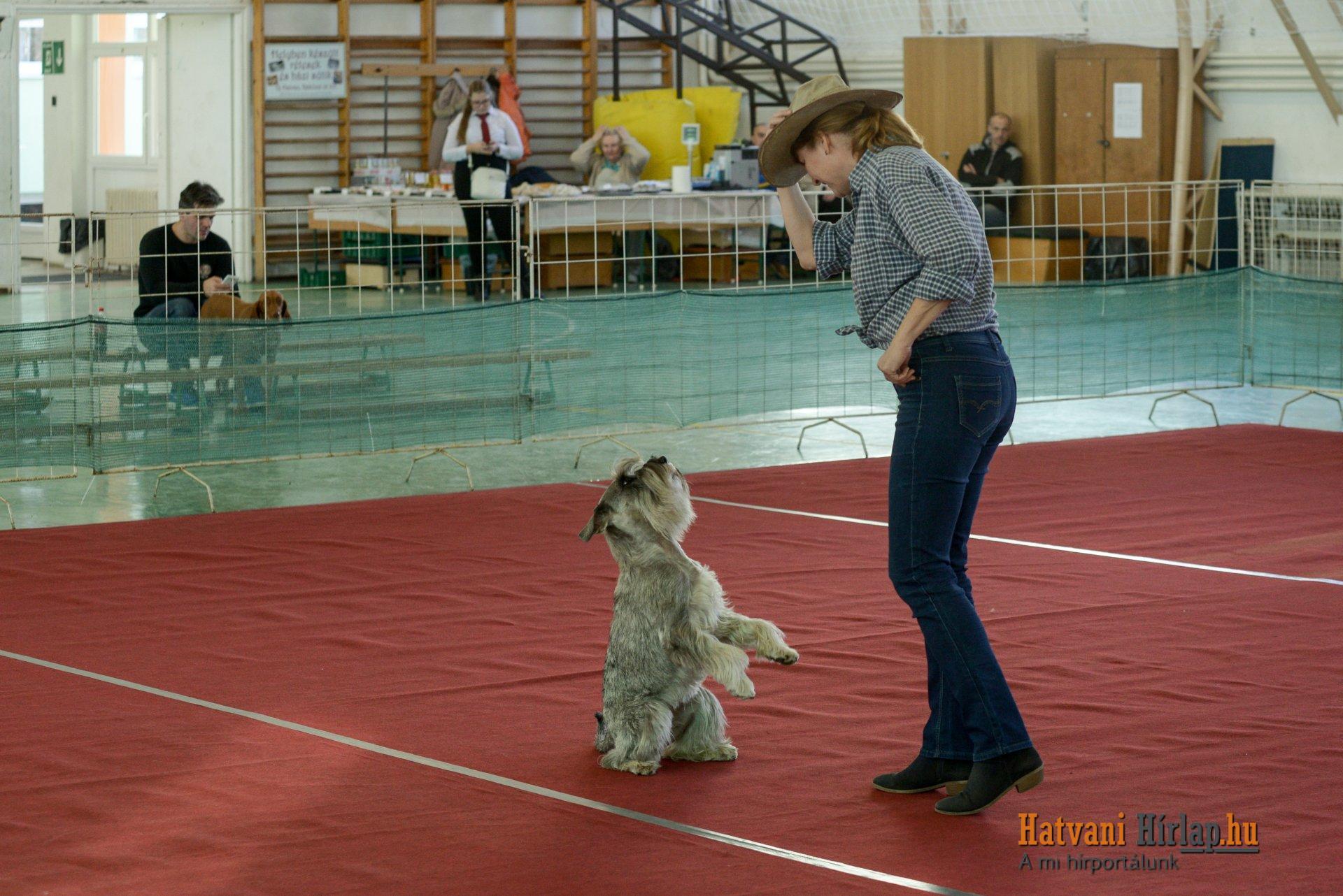 dog_dancing_07