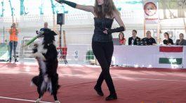 dog_dancing_19